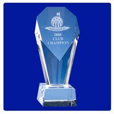 Logo Golf Custom Logo Berringer Award