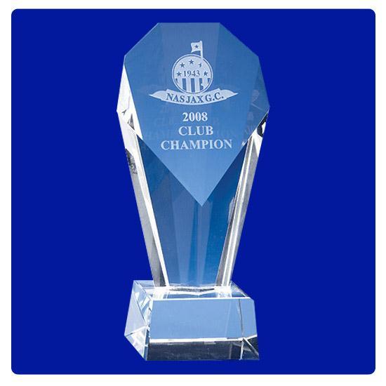 Logo Golf Berringer Award
