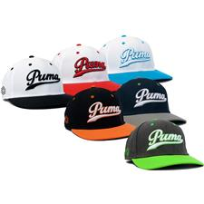 Puma Men's Script Fitted Hat